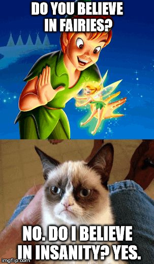 Grumpy Cat Does Not Believe | DO YOU BELIEVE IN FAIRIES? NO. DO I BELIEVE IN INSANITY? YES. | image tagged in memes,grumpy cat does not believe,grumpy cat | made w/ Imgflip meme maker