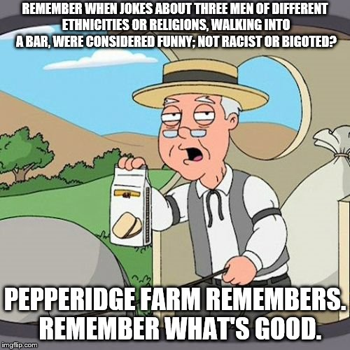 Remember What's Good | REMEMBER WHEN JOKES ABOUT THREE MEN OF DIFFERENT ETHNICITIES OR RELIGIONS, WALKING INTO A BAR, WERE CONSIDERED FUNNY; NOT RACIST OR BIGOTED? | image tagged in memes,pepperidge farm remembers,funny | made w/ Imgflip meme maker