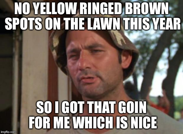 So I Got That Goin For Me Which Is Nice Meme | NO YELLOW RINGED BROWN SPOTS ON THE LAWN THIS YEAR SO I GOT THAT GOIN FOR ME WHICH IS NICE | image tagged in memes,so i got that goin for me which is nice | made w/ Imgflip meme maker