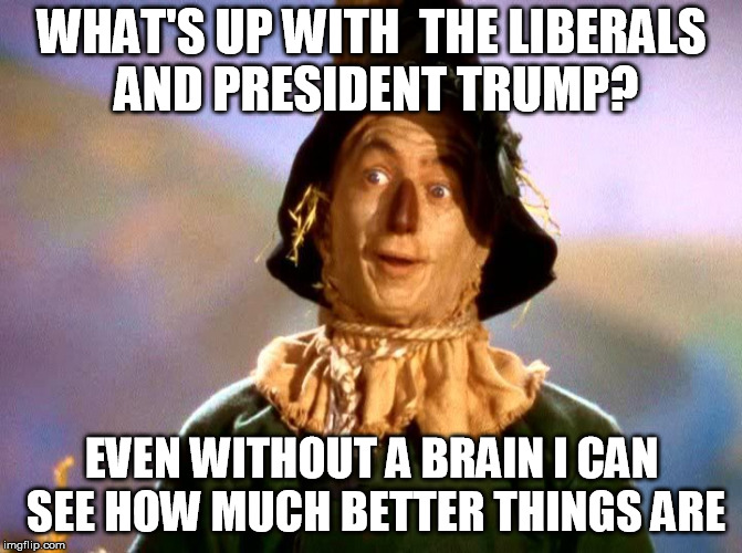 Wizard of Oz Scarecrow | WHAT'S UP WITH  THE LIBERALS AND PRESIDENT TRUMP? EVEN WITHOUT A BRAIN I CAN SEE HOW MUCH BETTER THINGS ARE | image tagged in wizard of oz scarecrow | made w/ Imgflip meme maker