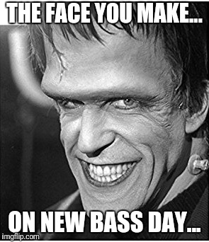 THE FACE YOU MAKE... ON NEW BASS DAY... | image tagged in memes,all about that bass,bass | made w/ Imgflip meme maker
