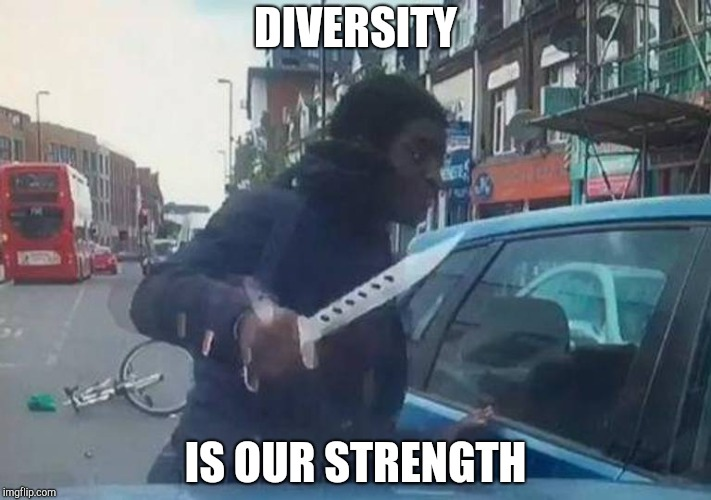 Diversity | DIVERSITY IS OUR STRENGTH | image tagged in diversity | made w/ Imgflip meme maker