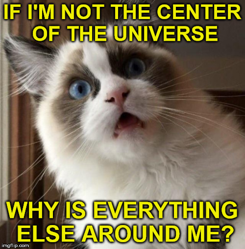 IF I'M NOT THE CENTER OF THE UNIVERSE WHY IS EVERYTHING ELSE AROUND ME? | made w/ Imgflip meme maker