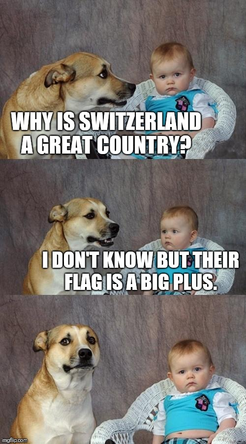 Dad Joke Dog Meme | WHY IS SWITZERLAND A GREAT COUNTRY? I DON'T KNOW BUT THEIR FLAG IS A BIG PLUS. | image tagged in memes,dad joke dog | made w/ Imgflip meme maker