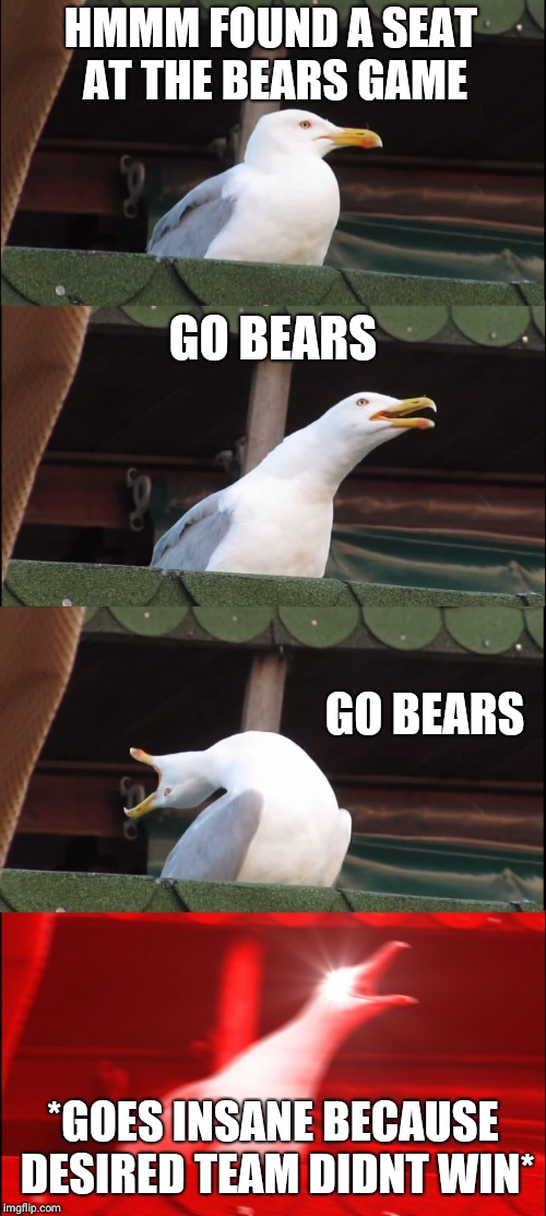 Inhaling Seagull Meme | HMMM FOUND A SEAT AT THE BEARS GAME GO BEARS GO BEARS *GOES INSANE BECAUSE DESIRED TEAM DIDNT WIN* | image tagged in memes,inhaling seagull | made w/ Imgflip meme maker