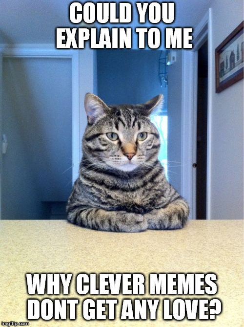 Just... Why?! | COULD YOU EXPLAIN TO ME WHY CLEVER MEMES DONT GET ANY LOVE? | image tagged in memes,take a seat cat | made w/ Imgflip meme maker