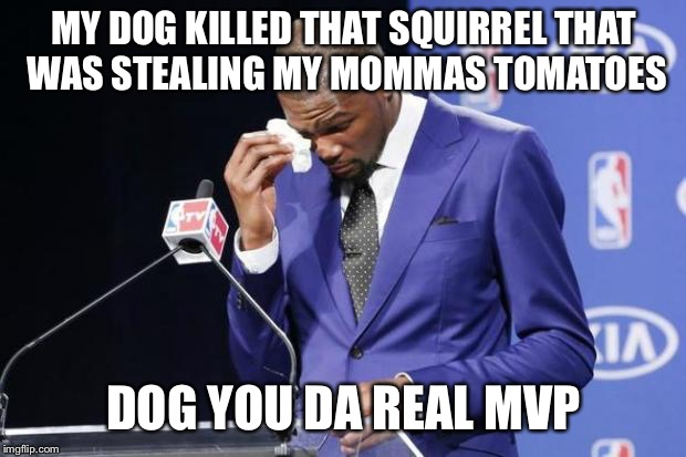 You The Real MVP 2 | MY DOG KILLED THAT SQUIRREL THAT WAS STEALING MY MOMMAS TOMATOES DOG YOU DA REAL MVP | image tagged in memes,you the real mvp 2 | made w/ Imgflip meme maker