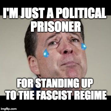 I'M JUST A POLITICAL PRISONER FOR STANDING UP TO THE FASCIST REGIME | image tagged in crybaby comey | made w/ Imgflip meme maker