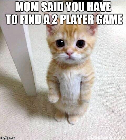 Cute Cat | MOM SAID YOU HAVE TO FIND A 2 PLAYER GAME | image tagged in memes,cute cat | made w/ Imgflip meme maker