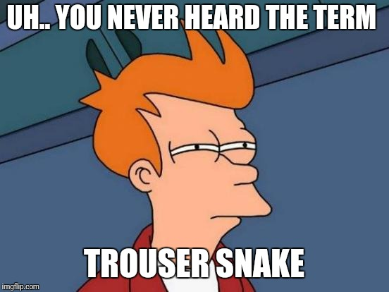 Futurama Fry Meme | UH.. YOU NEVER HEARD THE TERM TROUSER SNAKE | image tagged in memes,futurama fry | made w/ Imgflip meme maker
