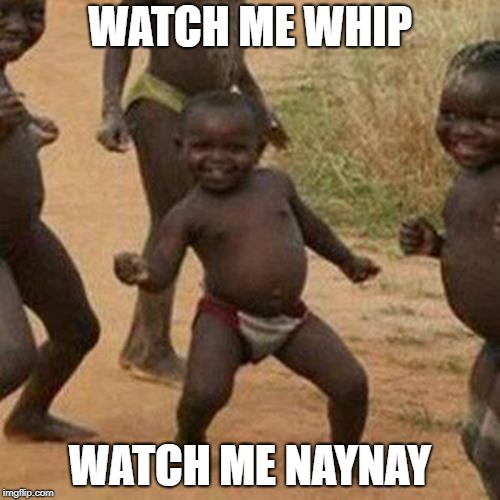 Third World Success Kid Meme | WATCH ME WHIP WATCH ME NAYNAY | image tagged in memes,third world success kid | made w/ Imgflip meme maker