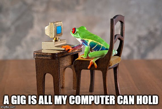 A GIG IS ALL MY COMPUTER CAN HOLD | made w/ Imgflip meme maker