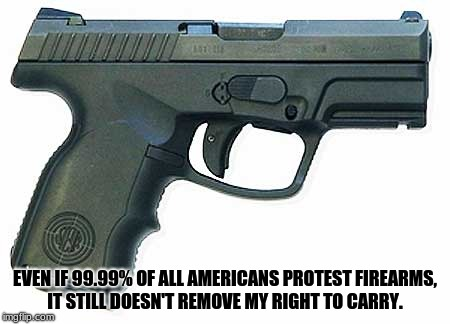 Pistol | EVEN IF 99.99% OF ALL AMERICANS PROTEST FIREARMS, IT STILL DOESN'T REMOVE MY RIGHT TO CARRY. | image tagged in pistol | made w/ Imgflip meme maker