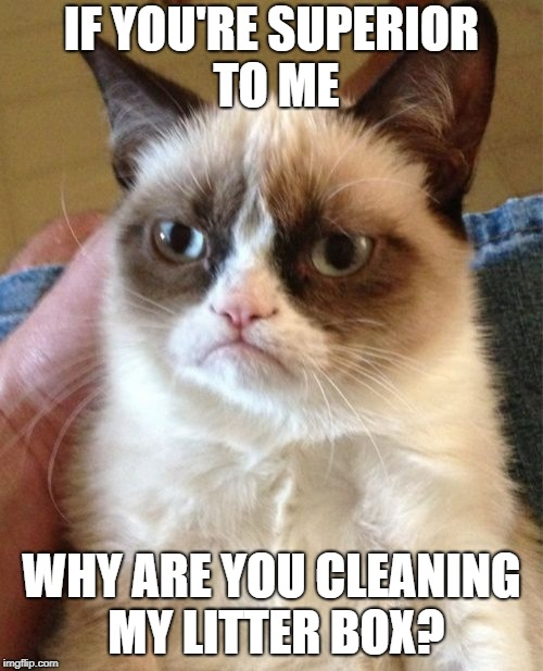 Grumpy Cat Meme | IF YOU'RE SUPERIOR TO ME WHY ARE YOU CLEANING MY LITTER BOX? | image tagged in memes,grumpy cat | made w/ Imgflip meme maker