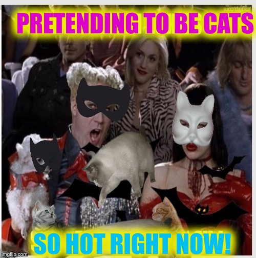 PRETENDING TO BE CATS SO HOT RIGHT NOW! | made w/ Imgflip meme maker