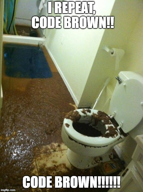 poop | I REPEAT, CODE BROWN!! CODE BROWN!!!!!! | image tagged in poop | made w/ Imgflip meme maker