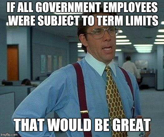 That Would Be Great Meme | IF ALL GOVERNMENT EMPLOYEES WERE SUBJECT TO TERM LIMITS THAT WOULD BE GREAT | image tagged in memes,that would be great | made w/ Imgflip meme maker