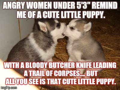 "Cute Puppies | ANGRY WOMEN UNDER 5'3"" REMIND ME OF A CUTE LITTLE PUPPY. WITH A BLOODY BUTCHER KNIFE LEADING A TRAIL OF CORPSES.... BUT ALL YOU SEE IS THAT  