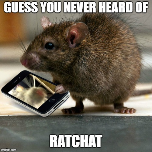 GUESS YOU NEVER HEARD OF RATCHAT | made w/ Imgflip meme maker