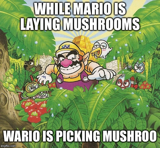 Wario picking mushrooms  | WHILE MARIO IS LAYING MUSHROOMS WARIO IS PICKING MUSHROOMS | image tagged in mushrooms,wario,mario | made w/ Imgflip meme maker