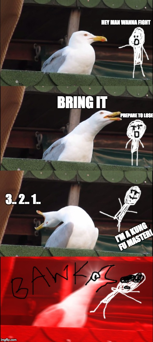 Fighting Seagull | HEY MAN WANNA FIGHT BRING IT PREPARE TO LOSE I'M A KUNG FU MASTER! 3.. 2.. 1.. | image tagged in memes,seagull | made w/ Imgflip meme maker