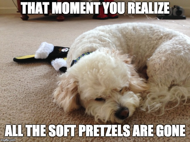 Pretzel Knot Undone | THAT MOMENT YOU REALIZE ALL THE SOFT PRETZELS ARE GONE | image tagged in food | made w/ Imgflip meme maker
