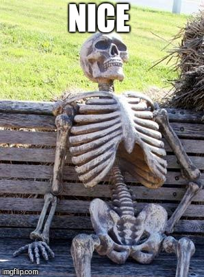 Waiting Skeleton Meme | NICE | image tagged in memes,waiting skeleton | made w/ Imgflip meme maker