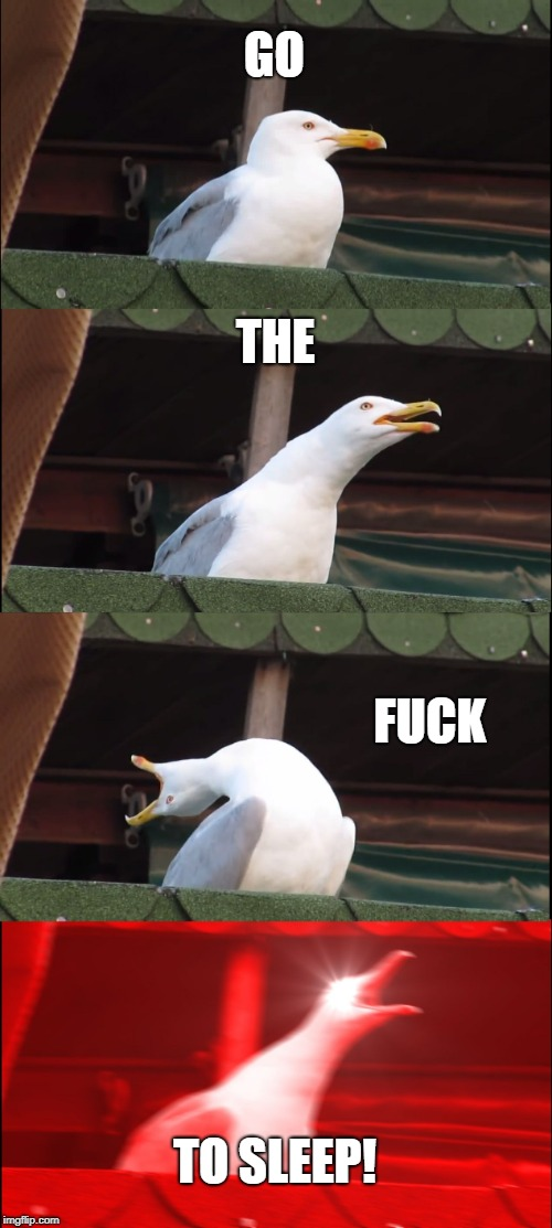 Inhaling Seagull Meme | GO THE F**K TO SLEEP! | image tagged in memes,inhaling seagull | made w/ Imgflip meme maker