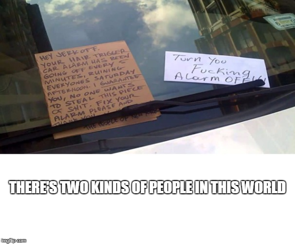 Two Kinds | THERE'S TWO KINDS OF PEOPLE IN THIS WORLD | image tagged in new york city,new york,car alarm,memes,funny,car | made w/ Imgflip meme maker