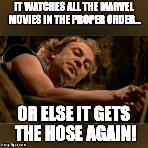 Buffalo Bill Gets the hose again | IT WATCHES ALL THE MARVEL MOVIES IN THE PROPER ORDER... OR ELSE IT GETS THE HOSE AGAIN! | image tagged in buffalo bill gets the hose again | made w/ Imgflip meme maker