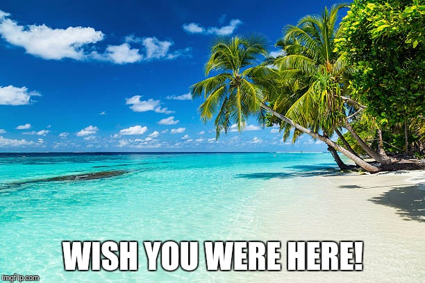 Original template week | WISH YOU WERE HERE! | image tagged in original template week,beach,wish you were here | made w/ Imgflip meme maker
