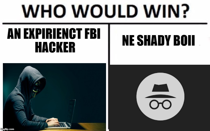 da ludo | AN EXPIRIENCTFBI HACKER NE SHADY BOII | image tagged in memes,who would win | made w/ Imgflip meme maker