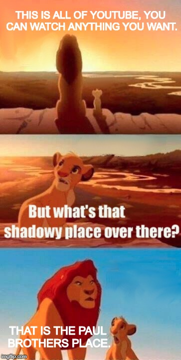 Simba Shadowy Place Meme | THIS IS ALL OF YOUTUBE, YOU CAN WATCH ANYTHING YOU WANT. THAT IS THE PAUL BROTHERS PLACE. | image tagged in memes,simba shadowy place,jake paul,logan paul,youtube | made w/ Imgflip meme maker