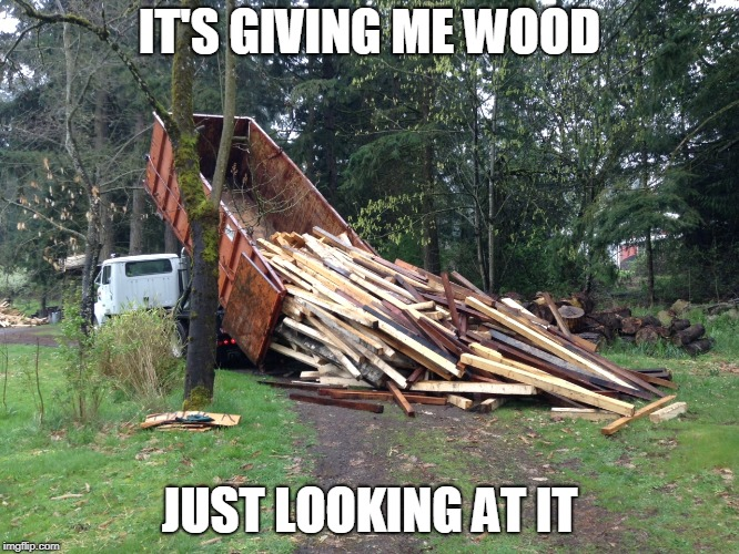 IT'S GIVING ME WOOD JUST LOOKING AT IT | made w/ Imgflip meme maker