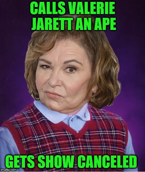 Bad Luck Roseanne(Bad Luck Brian Week 6/4 - 6/8) | CALLS VALERIE JARETT AN APE GETS SHOW CANCELED | image tagged in bad luck roseanne | made w/ Imgflip meme maker