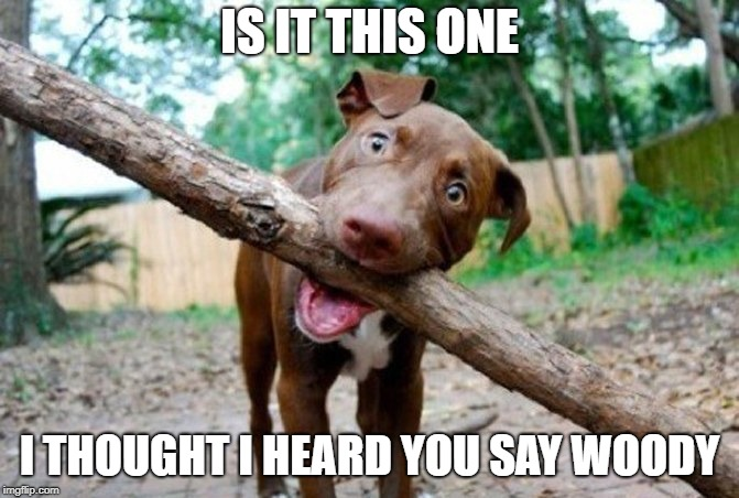 dog stick | IS IT THIS ONE I THOUGHT I HEARD YOU SAY WOODY | image tagged in dog stick | made w/ Imgflip meme maker