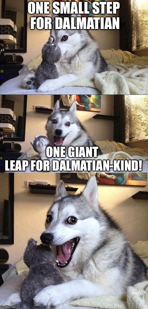 ONE SMALL STEP FOR DALMATIAN ONE GIANT LEAP FOR DALMATIAN-KIND! | image tagged in funpun | made w/ Imgflip meme maker