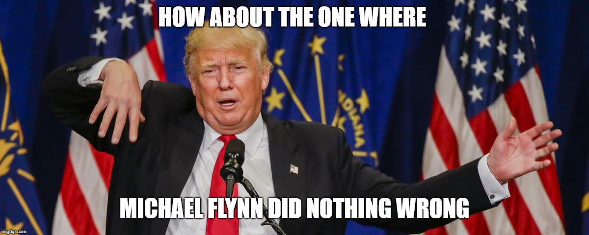 Trump limp | HOW ABOUT THE ONE WHERE MICHAEL FLYNN DID NOTHING WRONG | image tagged in trump limp | made w/ Imgflip meme maker