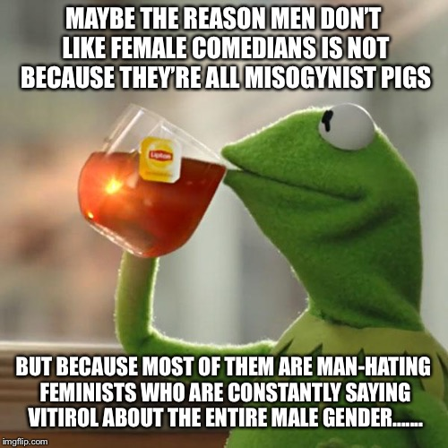 But Thats None Of My Business Meme | MAYBE THE REASON MEN DON'T LIKE FEMALE COMEDIANS IS NOT BECAUSE THEY'RE ALL MISOGYNIST PIGS BUT BECAUSE MOST OF THEM ARE MAN-HATING FEMINIST | image tagged in memes,but thats none of my business,kermit the frog | made w/ Imgflip meme maker