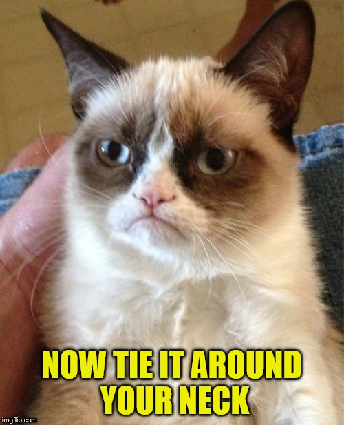 Grumpy Cat Meme | NOW TIE IT AROUND YOUR NECK | image tagged in memes,grumpy cat | made w/ Imgflip meme maker