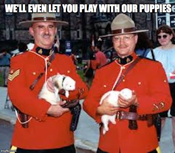 WE'LL EVEN LET YOU PLAY WITH OUR PUPPIES | made w/ Imgflip meme maker