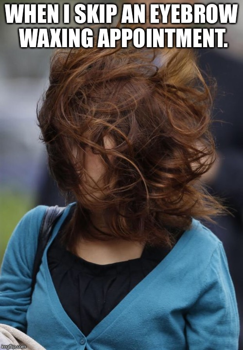 hair wind girl windy | WHEN I SKIP AN EYEBROW WAXING APPOINTMENT. | image tagged in hair wind girl windy | made w/ Imgflip meme maker