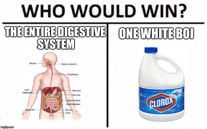 Who Would Win? Meme | THE ENTIRE DIGESTIVE SYSTEM ONE WHITE BOI | image tagged in memes,who would win | made w/ Imgflip meme maker