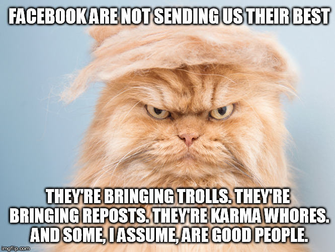 FACEBOOK ARE NOT SENDING US THEIR BEST THEY'RE BRINGING TROLLS. THEY'RE BRINGING REPOSTS. THEY'RE KARMA W**RES. AND SOME, I ASSUME, ARE GOOD | image tagged in trump cat,AdviceAnimals | made w/ Imgflip meme maker