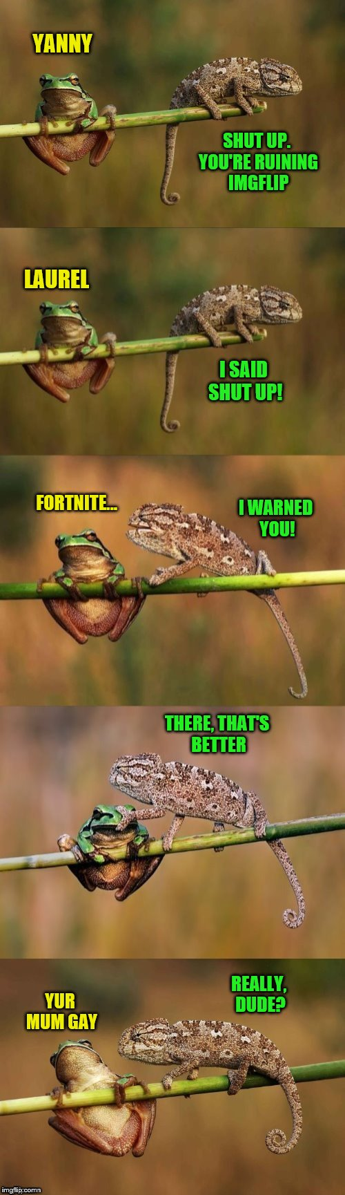 Frog Week, June 4-10, a JBmemegeek & giveuahint event! (Thanks to DashHopes for the template)  | YANNY LAUREL FORTNITE... YUR MUM GAY SHUT UP. YOU'RE RUINING IMGFLIP I SAID SHUT UP! I WARNED YOU! REALLY, DUDE? THERE, THAT'S BETTER | image tagged in frog and lizard,jbmemegeek,giveuahint,frog week,frogs,fortnite | made w/ Imgflip meme maker