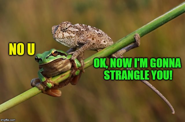NO U OK, NOW I'M GONNA STRANGLE YOU! | made w/ Imgflip meme maker