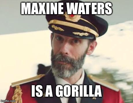 Or an ape | MAXINE WATERS IS A GORILLA | image tagged in captain obvious,fire me | made w/ Imgflip meme maker