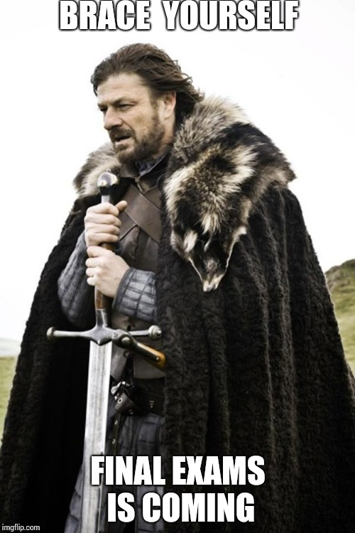 Brace yourself | BRACE  YOURSELF FINAL EXAMS IS COMING | image tagged in brace yourself | made w/ Imgflip meme maker