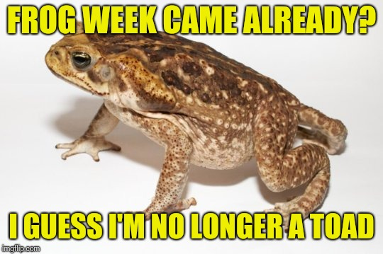 Frog week arrived. (a JBmemegeek and giveuahint event, 4-10 June). Prepare your toads templates ... Ah i mean frogs templates | FROG WEEK CAME ALREADY? I GUESS I'M NO LONGER A TOAD | image tagged in memes,frog week,toad,humor | made w/ Imgflip meme maker