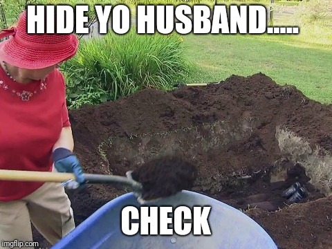 HIDE YO HUSBAND..... CHECK | made w/ Imgflip meme maker